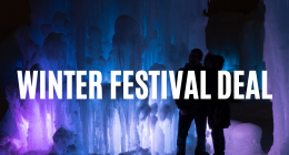 Winter Festival Deal